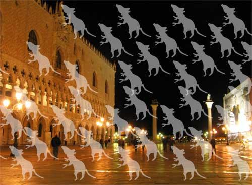 ベネチアのネズミたち