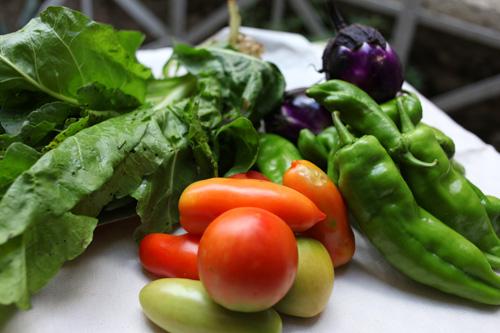 イタリアの夏野菜